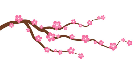Peach or cherry blossom tree branch with flowers flat vector graphic