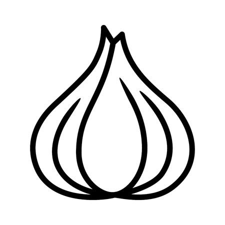 halitosis: Garlic bulb  allium sativum line art icon for food apps and websites
