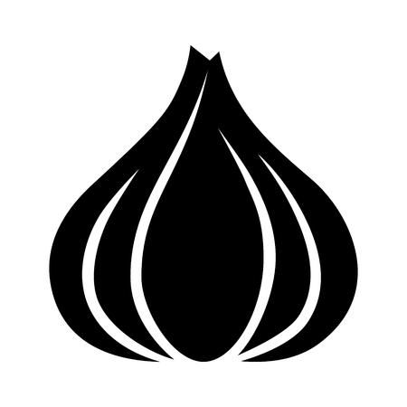 halitosis: Garlic bulb  allium sativum flat icon for food apps and websites