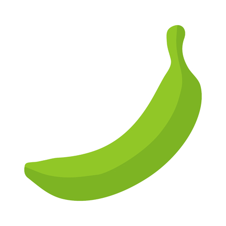 plantain: Green banana  cooking plantain fruit flat icon for food apps and websites