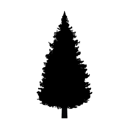 Evergreen conifer / pine tree flat icon for apps and websites Illustration