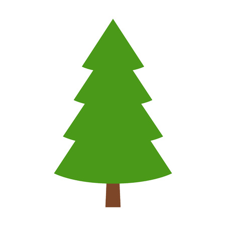 boreal: Evergreen conifer  pine tree flat stylized color icon for apps and websites Illustration