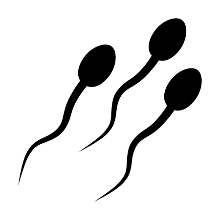 testiculos: Las células de esperma  icono plana espermatozoide para aplicaciones y sitios web