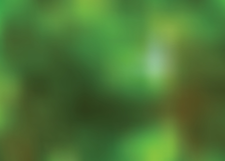 backwoods: Blurred abstract green nature background with light shining through