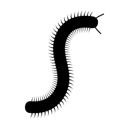 crawly: Millipede flat icon for nature apps and websites Illustration