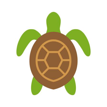 자연 앱과 웹 사이트를위한 바다 거북  해양 거북 평면 뷰 컬러 아이콘
