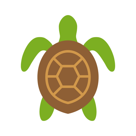 sea view: Sea turtle  marine turtle top view flat color icon for nature apps and websites Illustration