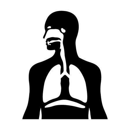 respiratory apparatus: Human biological respiratory system flat icon for medical apps and websites