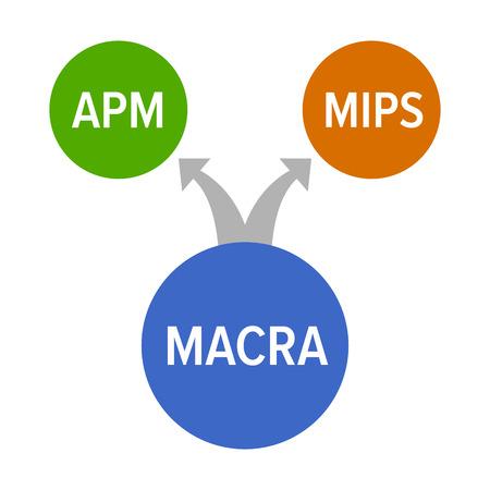 MACRA (メディケア アクセスと 2015 チップ再授権法)、MIPS、APM、カラフルなヘルスケアのベクトル図