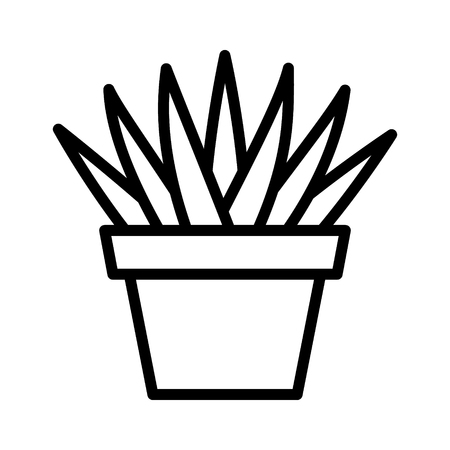 Aloe Aristata succulent potted plan line art icon for apps and websites