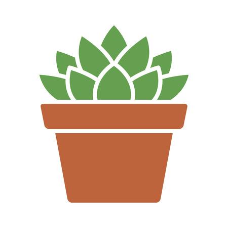 Haworthia Cooperi icona di colore piatto succulento pianta in vaso per le applicazioni e siti web