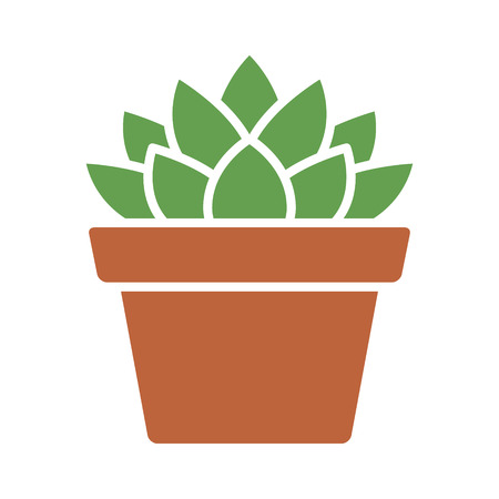 Haworthia Cooperi succulent potted plant flat color icon for apps and websites