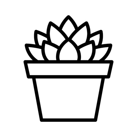 Haworthia Cooperi succulent potted plant line art icon for apps and websites