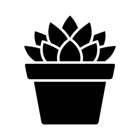 Haworthia Cooperi succulent potted plant flat icon for apps and websites