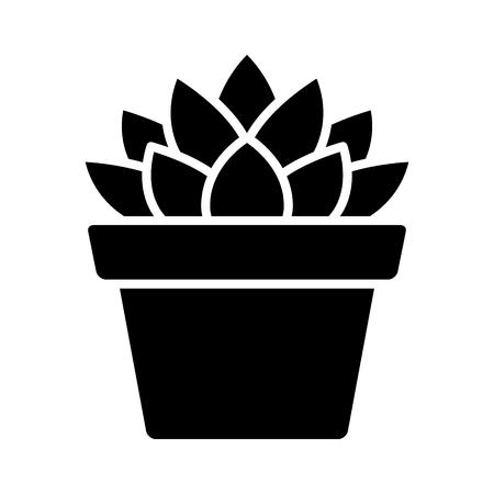 Haworthia Cooperi succulento piatto icona pianta in vaso per le applicazioni e siti web Archivio Fotografico - 66078522
