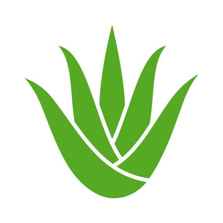Plante verte d'aloe vera avec des feuilles d'icône de couleur plate pour les applications et les sites Web Vecteurs