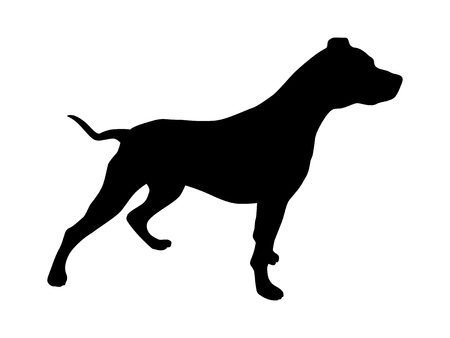 Pet pitbull / pit bull terrier dog or canine flat icon for animal apps and websites 일러스트