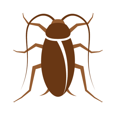 Cockroach pest or roach infestation flat color vector icon for insect apps and websites
