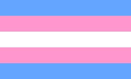 Transgender flag or trans banner with blue and pink strips vector