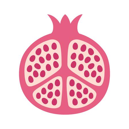 Pomegranate fruit cut in half flat vector