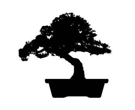 Bonsai tree mini potted plant flat vector icon for apps and websites