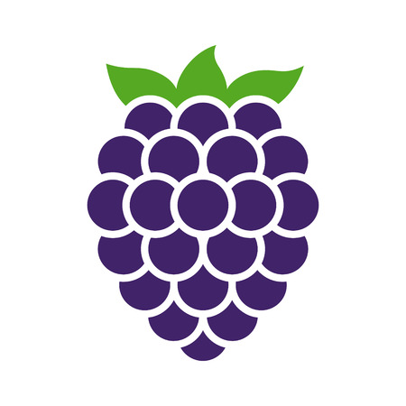 Blackberry fruit or blackberries flat color vector icon for food apps and websites