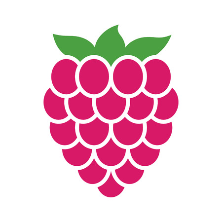 Raspberry fruit or raspberries flat color vector icon for food apps and websites