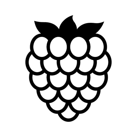 Raspberry fruit or raspberries line art vector icon for food apps and websites