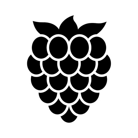 Raspberry fruit or raspberries flat vector icon for food apps and websites