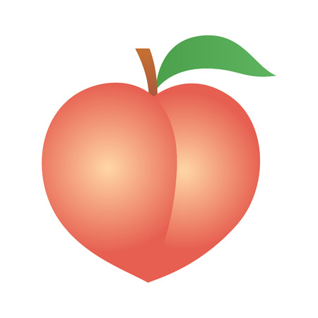 peachy: Peach fruit or nectarine with leaf vector icon illustration for food apps and websites
