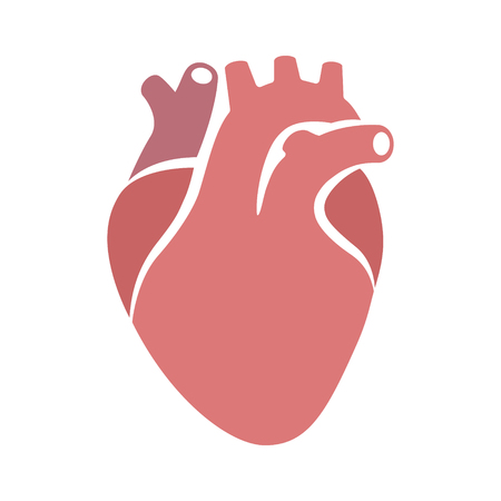 superior vena cava: Human heart organ with aorta and arteries flat vector color icon for medical health apps and websites