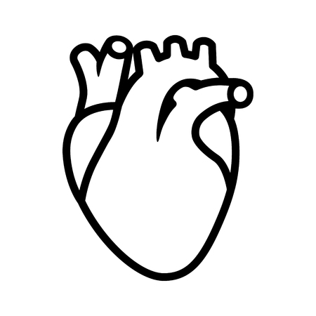 rate: Human heart organ with aorta and arteries line art vector icon for medical health apps and websites Illustration