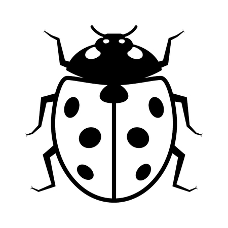 infestation: Coccinellidae Ladybug or ladybird beetle insect flat vector icon for wildlife apps and websites Illustration