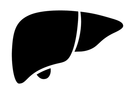 synthesis: Human liver organ with gallbladder flat vector icon for medical apps and websites