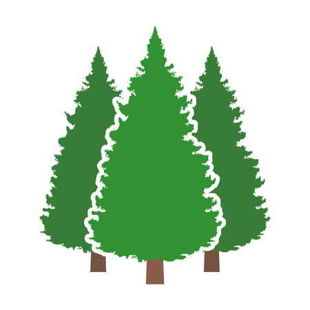 Three conifer pine trees in a forest or park flat vector color icon for nature apps and websites. Illustration