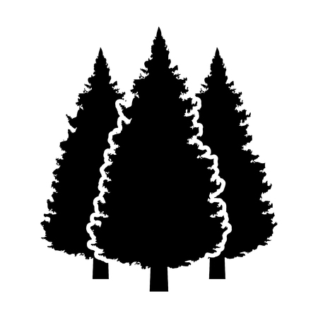 Three conifer pine trees in a forest or park flat vector icon for nature apps and websites