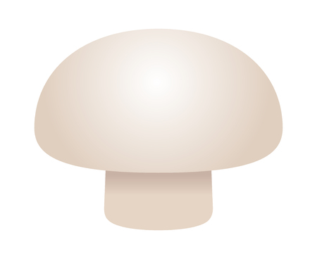 Realistic  common button mushroom or toadstool vector icon for food apps and websites Ilustração