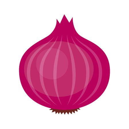 Red or purple bulb onion vegetable flat vector icon for food apps and websites Standard-Bild - 101480718