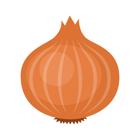 Yellow or brown bulb onion vegetable flat vector icon for food apps and websites