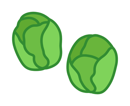 Two Brussels sprouts vegetable buds flat vector color icon for food apps and websites