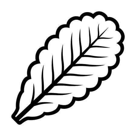 Vegetarian lettuce leaf line art vector icon for vegetable apps and websites