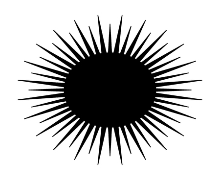 Spiny sea urchin marine animal flat vector icon for wildlife apps and websites