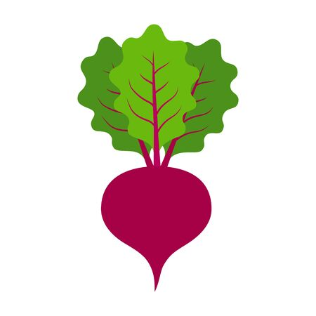 Beet or beets beetroot vegetable with leaves flat vector color icon for apps and websites