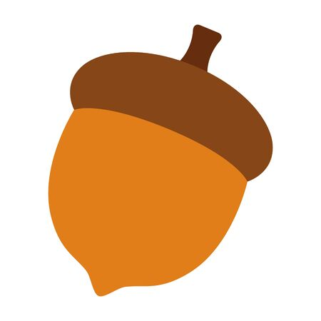 Acorn or oaknut seed flat vector color icon for nature apps and websites