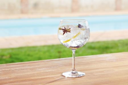 badiane: anis �toil� et la cardamome gin tonic cocktail-bar Banque d'images