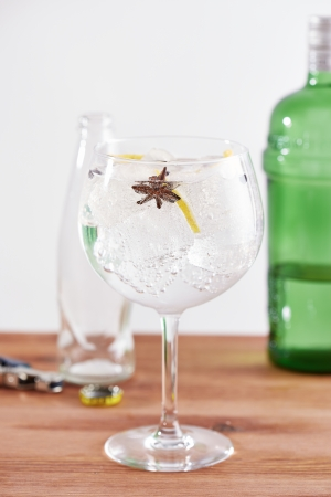 Star anise and juniper gintonic on balon glass photo