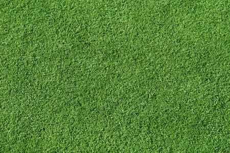 Smooth, short trimmed grass. Stock Photo