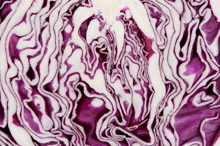 Close-up of sliced red cabbage. Isolated on white.