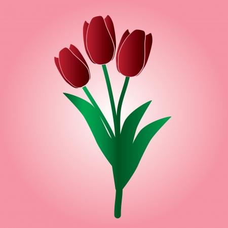 tulipe rouge: tulipe rouge fleur eps10 Illustration