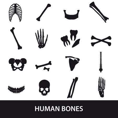 human bones: human bones set of icons